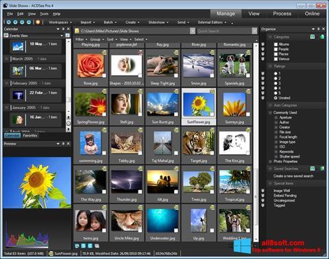 Ekran görüntüsü ACDSee Windows 8