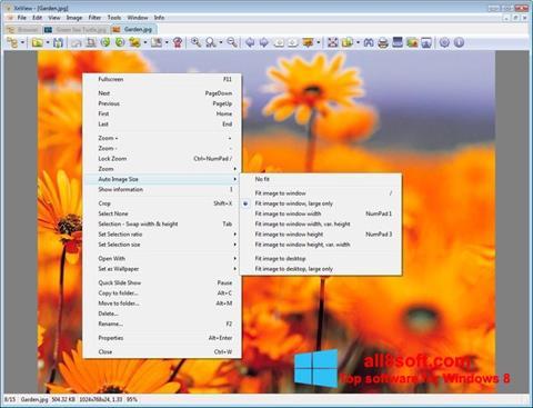 Ekran görüntüsü XnView Windows 8