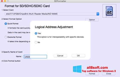 Ekran görüntüsü SDFormatter Windows 8