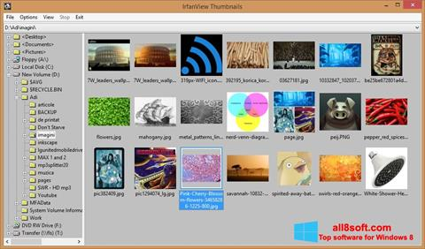 Ekran görüntüsü IrfanView Windows 8