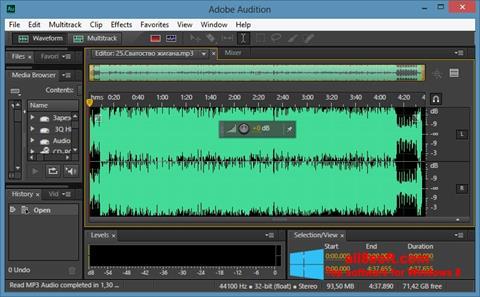 Ekran görüntüsü Adobe Audition CC Windows 8