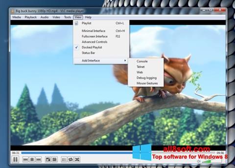 Ekran görüntüsü VLC Media Player Windows 8